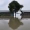 14 india flooding 0905