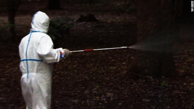 Rare outbreak in Japan