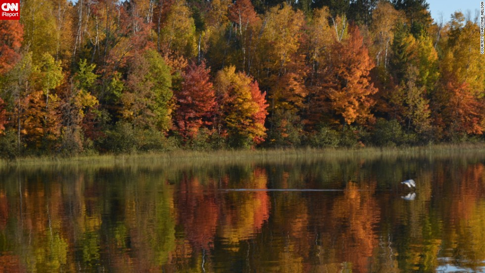 "<a href=""http://ireport.cnn.com/docs/DOC-856535"">Christine Nelson</a> captured this scene of the fall season from a pontoon boat on Ely Lake in Eveleth, Minnesota. ""I was loving the colors and watching the (bird's) reflection skimming the water,"" she said."