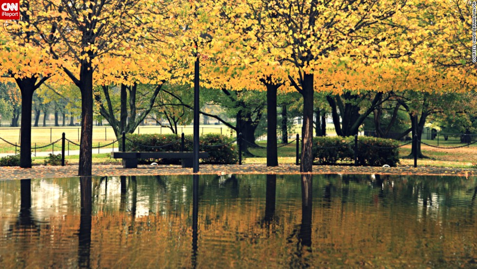 "<a href=""http://ireport.cnn.com/docs/DOC-1062153"">Sandy Ibrahim Major </a>was visiting the Vietnam Veterans Memorial in 2013 when she took this picture. ""The way the water beautifully mirrored the colorful fall leaves of these perfectly aligned trees caught my attention,"" she said."