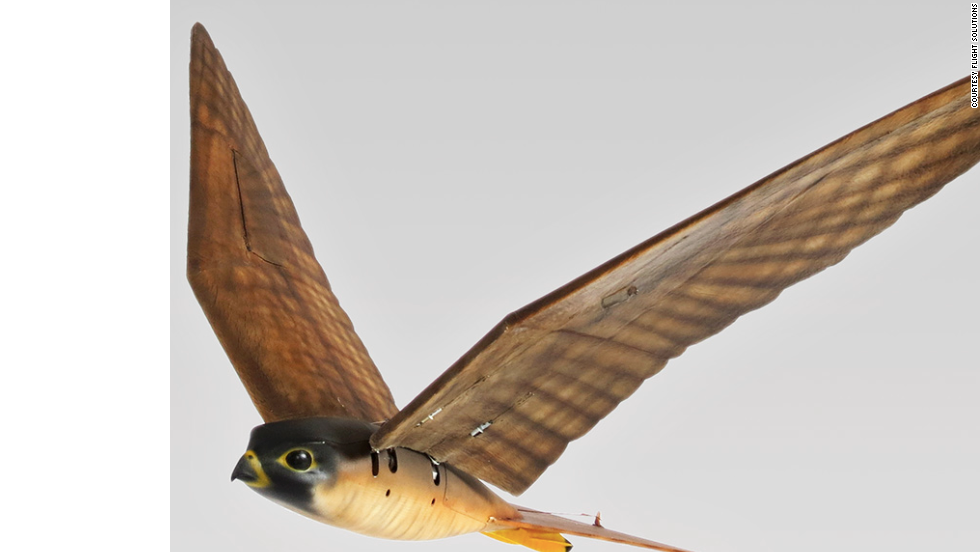 A robot Peregrine Hawk from Clear Flight Solutions.