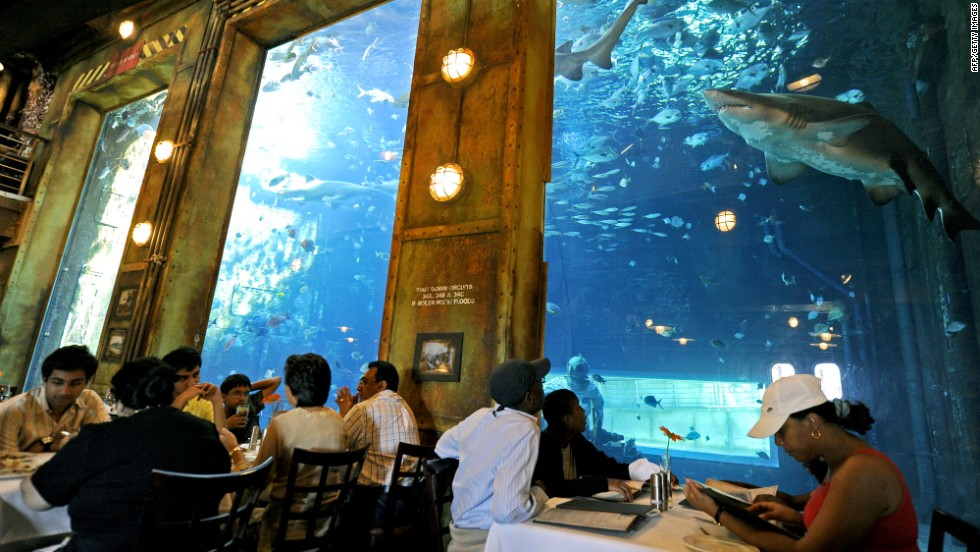 One of uShaka's attractions is the Cargo Hold restaurant, where diners eat while sharks look on, possibly licking their lips.