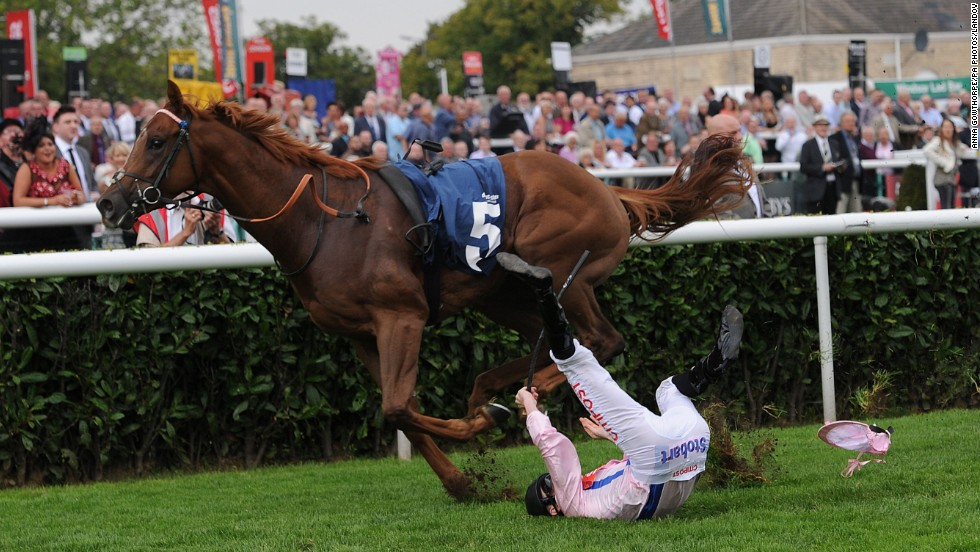 George Baker falls from Cotai Glory as they were about to win a race Friday, September 12, in Doncaster, England. Baker was not hurt.