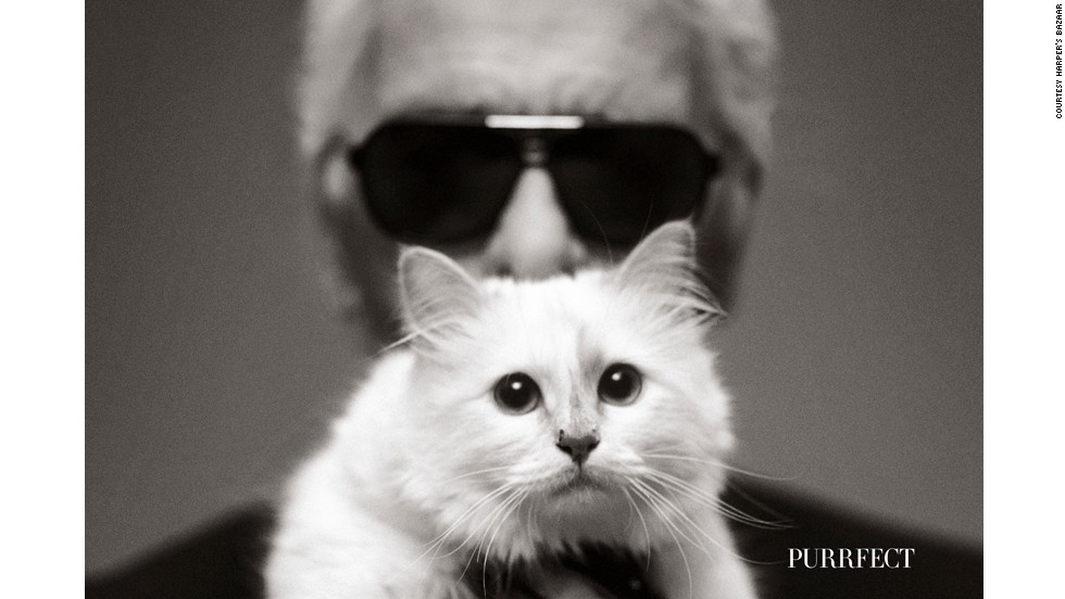 "Not content with being confined to the inside pages of a magazine, no matter how prestigious, Choupette graced the cover of Harper's Bazaar with ""daddy,"" as she is said to refer to Lagerfeld, looking out with a gaze worthy of the most a-list cover girl."