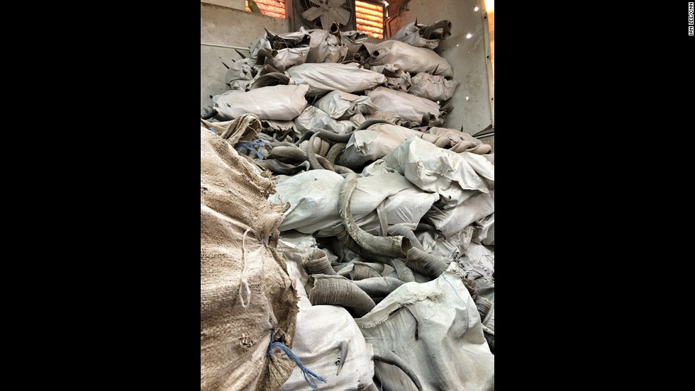 Sacks of various animal horns fill Ribak's shofar factory. There are horns from African antelope, rams and buffalo.