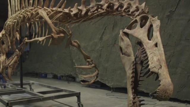 spc inside africa spinosaurus_00034904.jpg