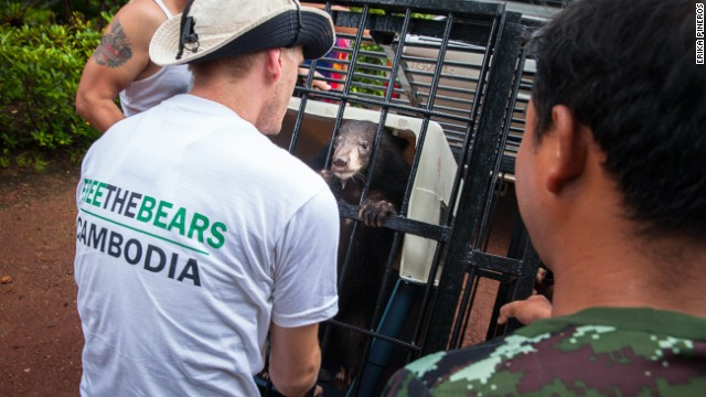 Nev Broadis tries to calm the moon bear cub, known as Rescue Number 182.