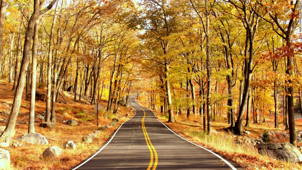"A canopy of crisp yellow and red leaves shade a lonely road in <a href=""http://ireport.cnn.com/docs/DOC-1173459"">Harriman State Park</a>. With 200 miles of hiking trails, it is the second largest state park in New York."