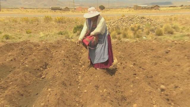 cnnee montero bolivia indigenous and economy_00012107.jpg