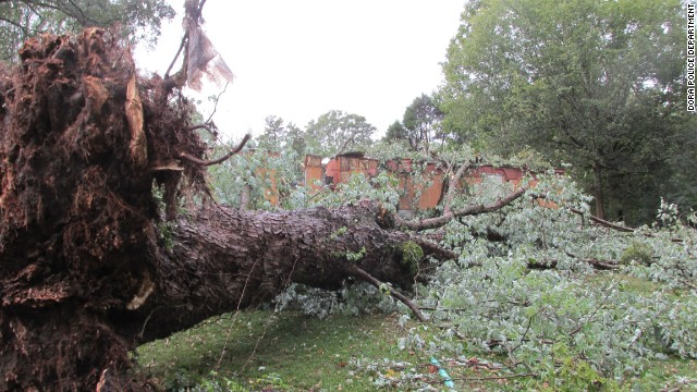 A 75-year-old woman dies when a tree falls on her mobile home during a storm
