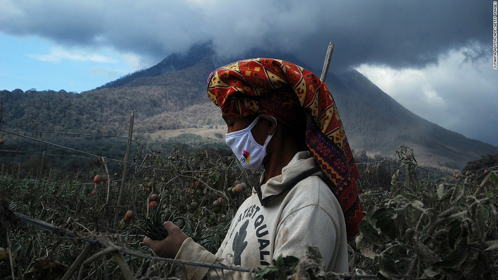 "OCTOBER 14 - SUMATRA ISLAND, INDONESIA: A woman wears a face mask as protection against volcanic ash while she harvests chillies and tomatoes at a village in Karo district. Mount Sinabung volcano, which has been<a href=""http://cnn.com/2014/02/03/world/asia/indonesia-volcano/""> erupting since February,</a> continues to spew smoke in the background."