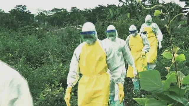 dnt robertson WHO to investigate ebola response_00001209.jpg
