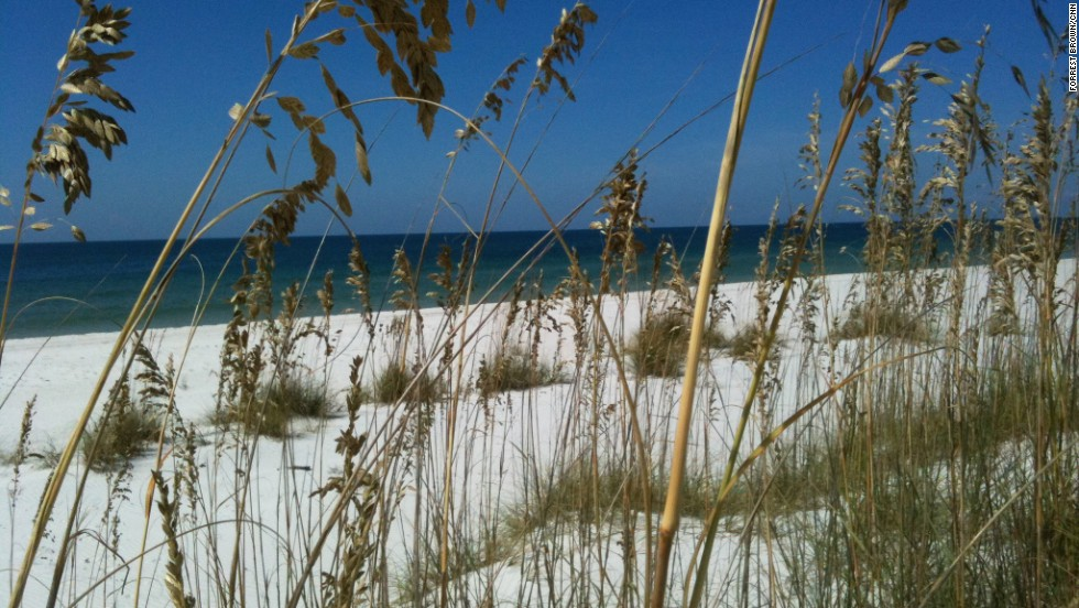 Imagine a picture-perfect Gulf beach with sugar-white sand and sparkling waters. That would be St. Joseph Peninsula State Park. It's about 30 miles west of Apalachicola.