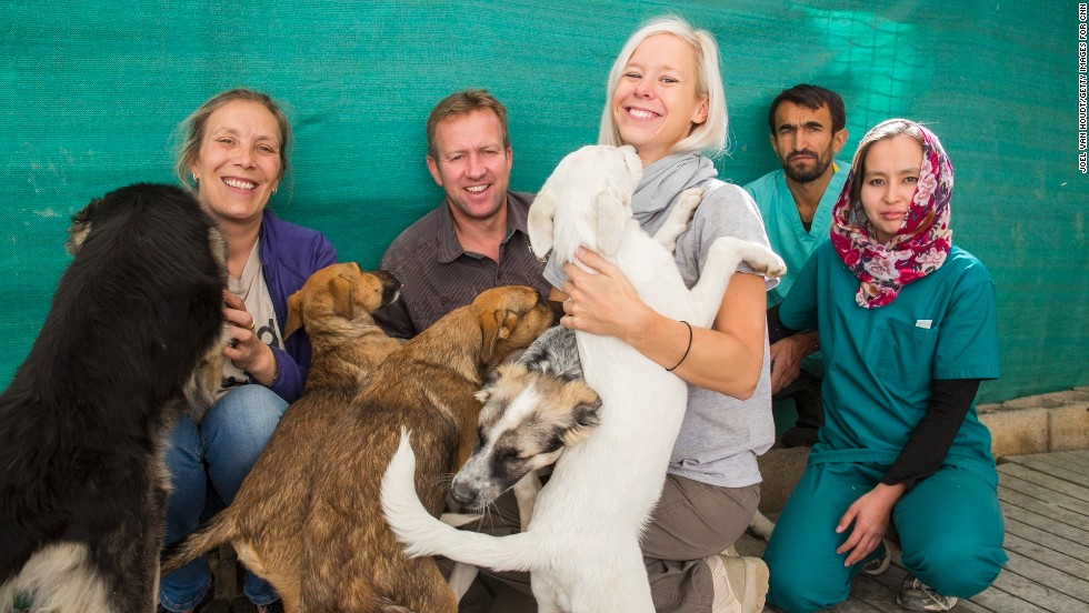 Nowzad Dogs has reunited almost 700 people with their adopted animals in Afghanistan.