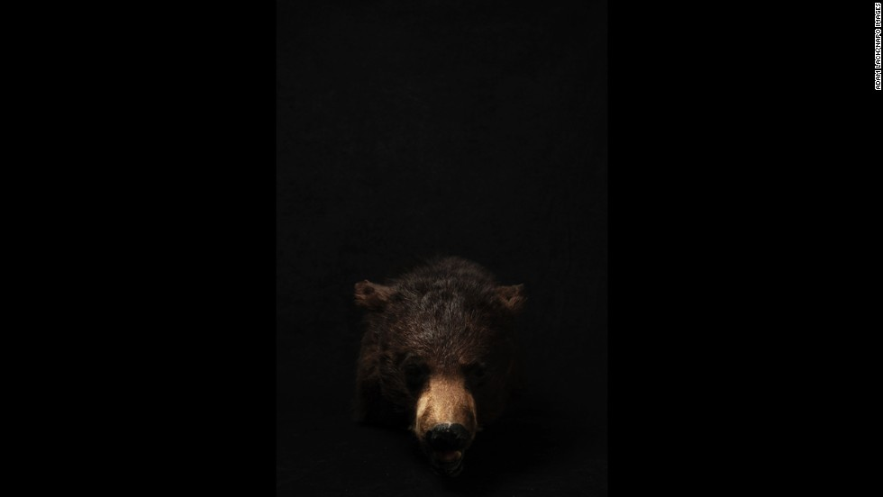 "Lach used a black background for some of his photos. ""I wanted to isolate these exhibits to give them the rank of authenticity and pain,"" he said."