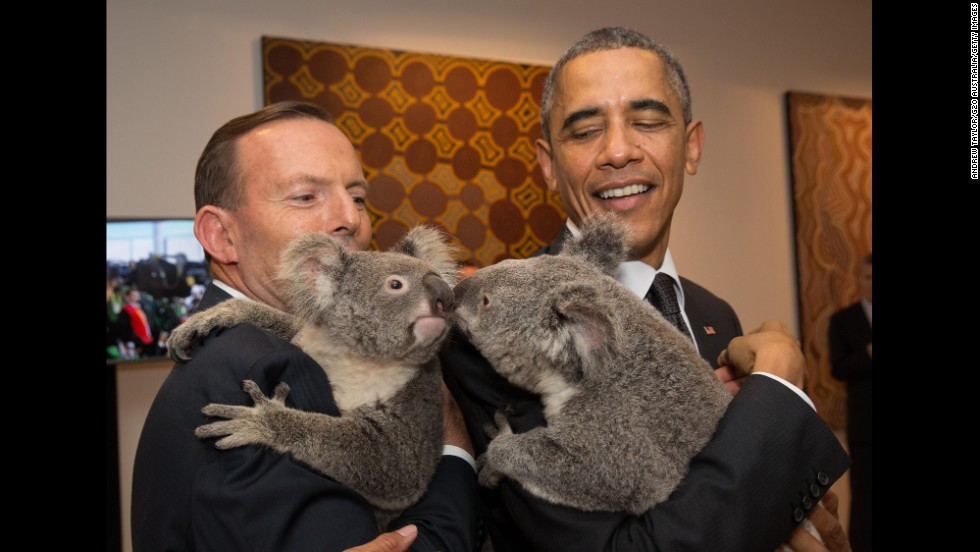 Australian Prime Minister Tony Abbott, left, and U.S. President Barack Obama meet koalas before the start of a G20 meeting in Brisbane, Australia, on Saturday, November 15.