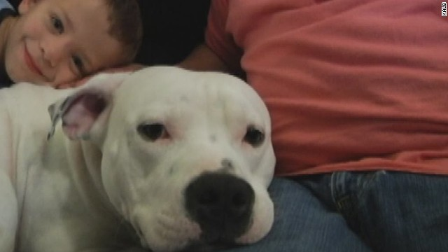 Family to lose dog to village ordinance