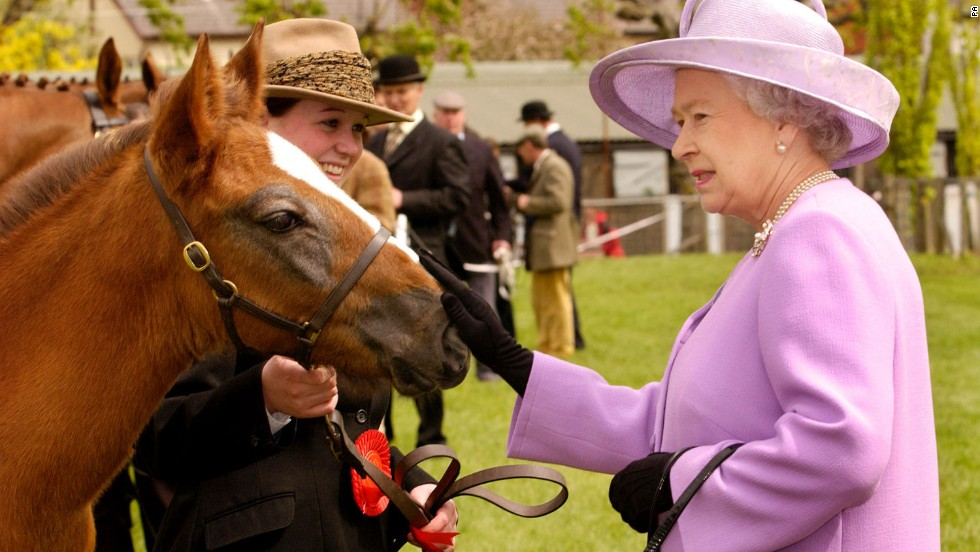 Ed, a two-month old Irish Draught colt foal, attracts the Queen's attention on the final day of her Golden Jubilee visit to Northern Ireland.