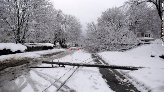 Powerlines and a tress rest in the street in Pittsfield, Massachusetts, on November 27 after a winter storm that struck on Wednesday.