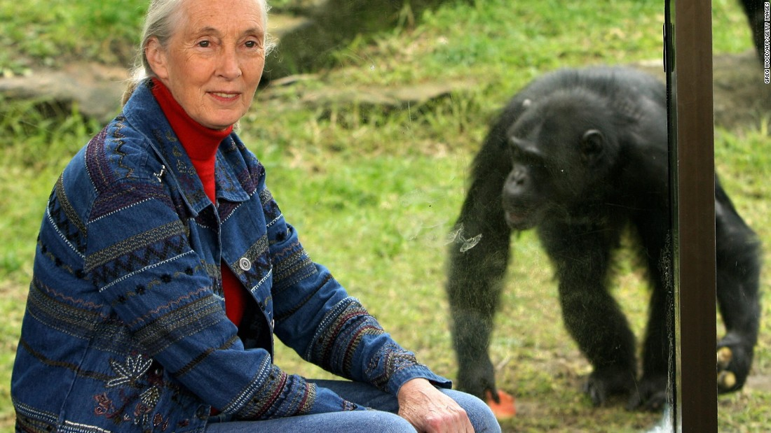 Jane Goodall Fast Facts - CNN.com