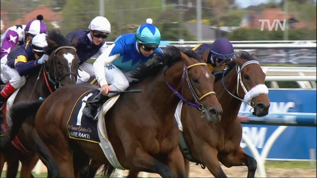 cnnee ag MELBOURNE CUP PREVIEW_00010018.jpg
