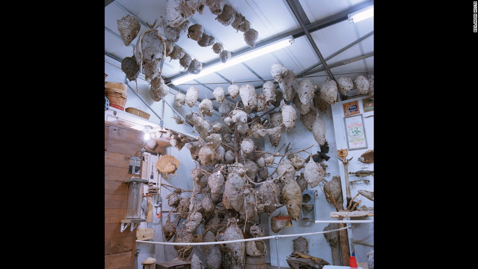 A hornet nest collection resides in the corner of Debo McKinney's ad hoc museum. His private barn has a treasure trove of antiques, collectibles and unusual items.