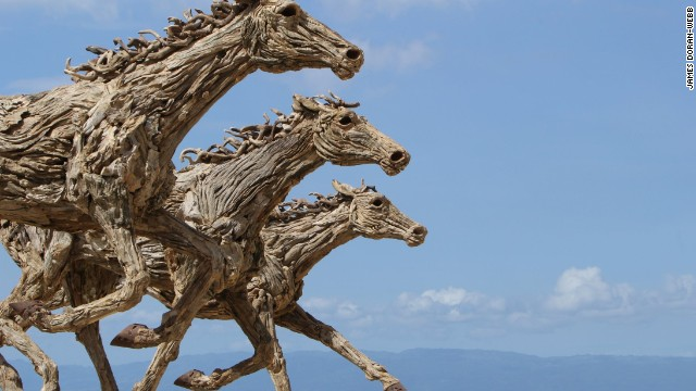 Sculptures in driftwood