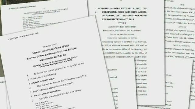 tsr dnt bash inside budget bill_00000530.jpg
