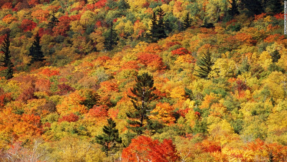 "Deciduous trees in the Northeastern United States create a tapestry of rich colors in the fall. While familiar to U.S. travelers, the colorful leaves never fail to draw hordes of autumn ""leaf peepers."""