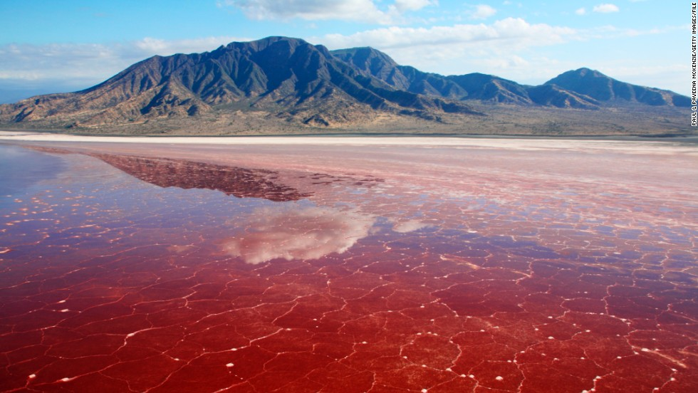 This caustic lake along the Great Rift Valley in Tanzania is extremely salty, hot and inhospitable to most plants and animals. However, flamingos and other wetland birds thrive here alongside a species of alkaline tilapia and the salt-loving microorganisms that give the water an otherworldly red hue.