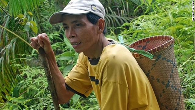 Iban tracker Apau is adept at following the trails of endangered orangutan.