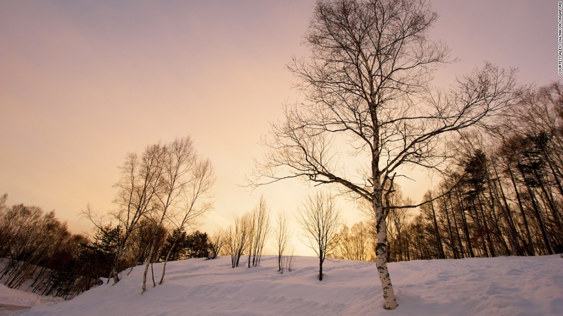 Pro Nikon photographer Alex Soh says the best time to shoot winter landscapes is early in the morning, before the sun gets too high and melts the snow.