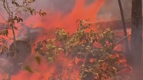 pkg stout australia bushfires_00002519