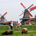 Windmills Gallery 4 - cyclists and tourists