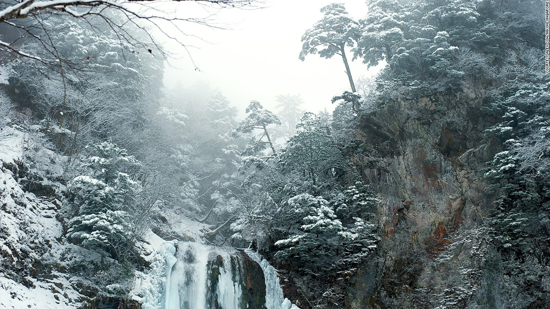 Frozen trees and waterfalls make for beautiful winter photography subjects.