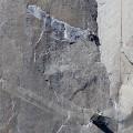 14 el capitan climbers 0114