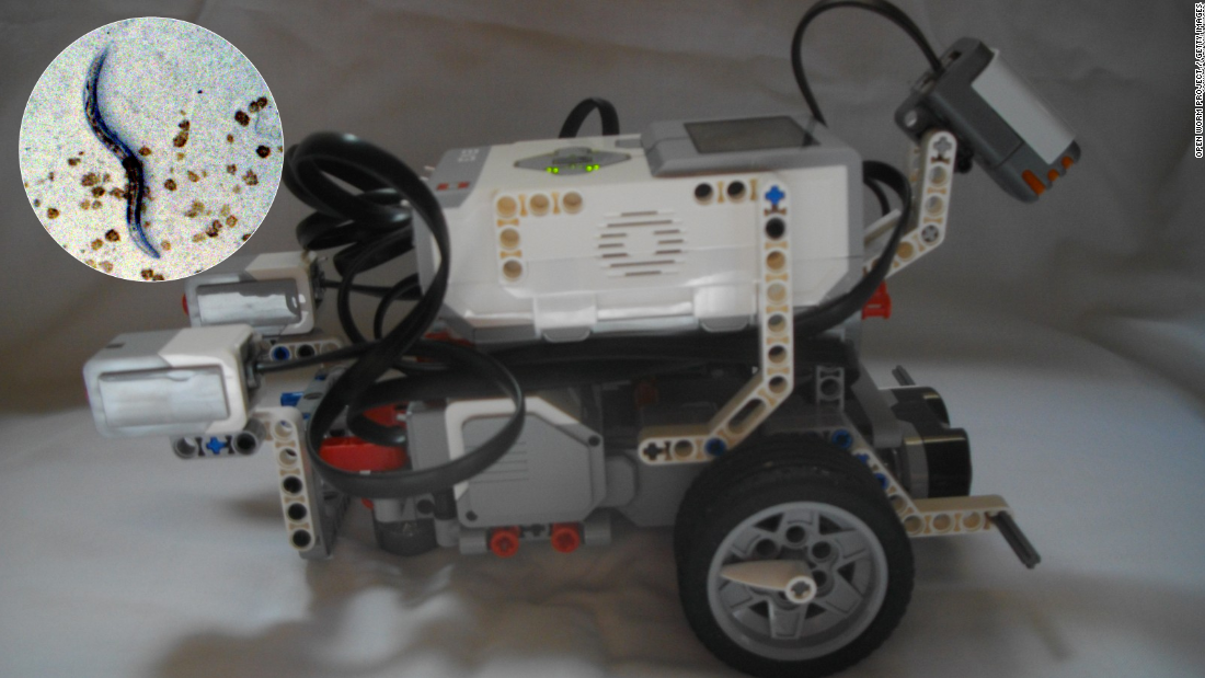 While the developers say it will be some time before the Lego bot will be avoiding predators or searching for a mate, scientists say the project shows that artificial intelligence, or AI as it is known, is coming out of the realm of science fiction.
