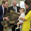 prince george wombat