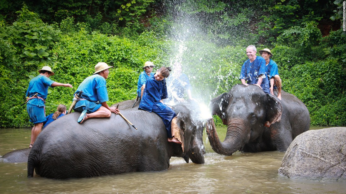 Lampang's Elephant Conservation Center was founded in 1993 and offers daily mahout (elephant trainer) sessions for tourists.