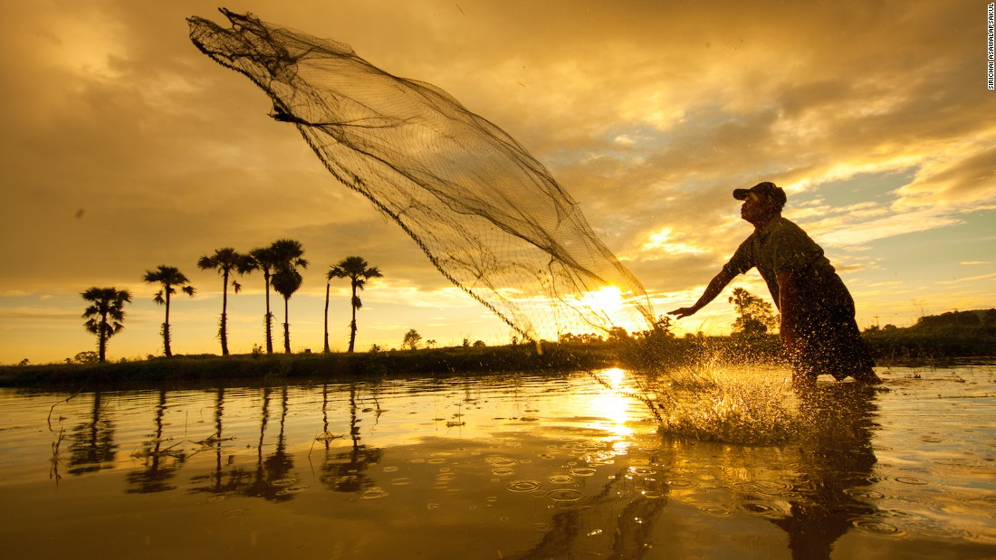 A fisherman tries his luck in a watery rice paddy in Lampang's Hang Chat district.