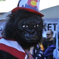 3. Coolest runs Denver Gorilla Run