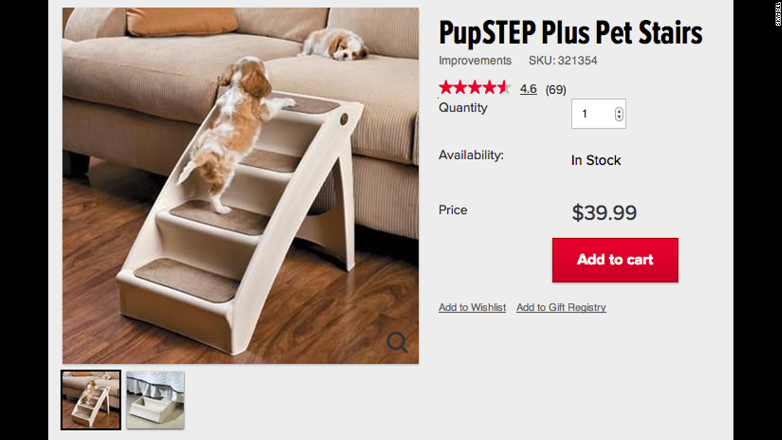 It's a cold-hearted traveler who fails to be charmed by the PupSTEP Plus Pet Stairs. Also good for small kids.