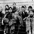 02 auschwitz liberation