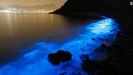 A long exposure photo from January 22, 2015 shows the glow from a Noctiluca scintillans algal bloom along the seashore in Hong Kong.