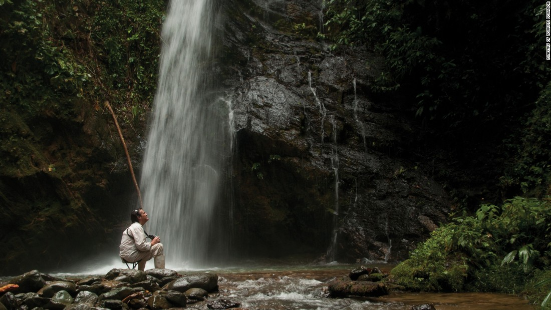 The Mashpi Rainforest Biodiversity Reserve in the western Andes is home to several rivers that form gorgeous waterfalls and pools. An estimated 500 species of bird inhabit the surrounding forest.