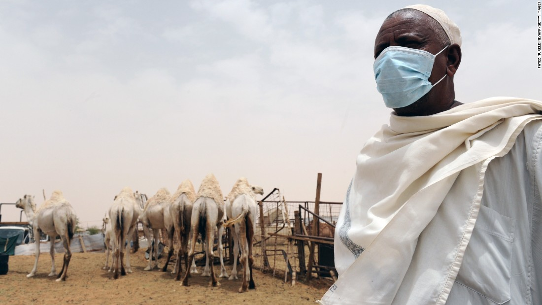A farmer wears a mask as he works near camels at his farm outside Riyadh, Saudi Arabia, to avoid spreading the Middle East Respiratory Syndrome coronavirus (MERS-CoV). Since Spring 2012, MERS-CoV spread slowly in the Middle East but has now reached 25 countries, with an outbreak currently in South Korea.