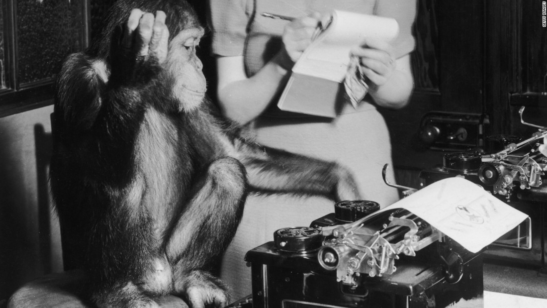 "The ""infinite monkey theorem"" states that given enough time, a monkey will eventually type any given text on a keyboard, including William Shakespeare's whole body of work."