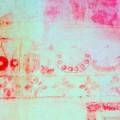 1. UNESCO Angkor Wat wall paint