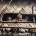 10 TWL Vanuatu