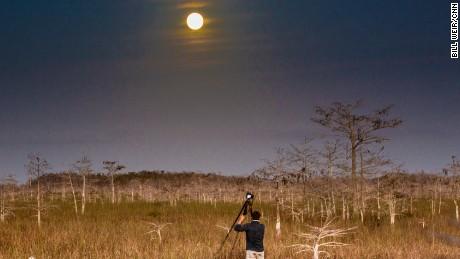 08 TWL Everglades